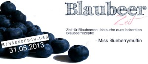 BlaubeerzeitBanner1