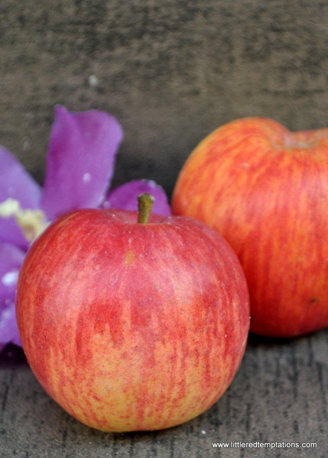 Apfelgugel