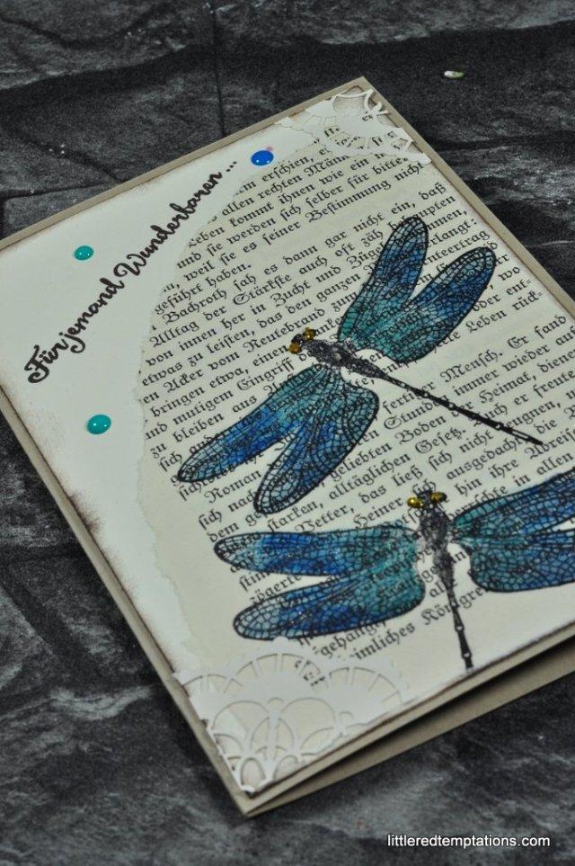 Libellen Karte Stampin Up